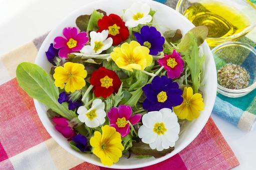 식용 꽃 샐러드 _6