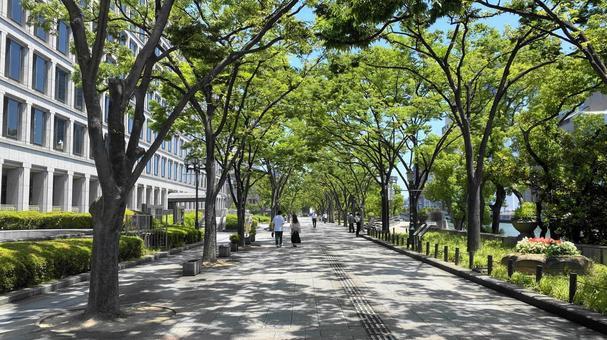 Nakanoshima Park (Osaka)