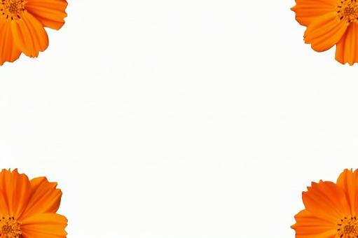 Orange flower frame (with PSD)