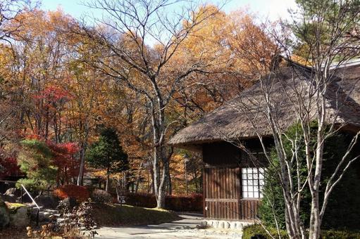 Nikko Yunishigawa Onsen Autumn Leaves 15 Heike no Sato