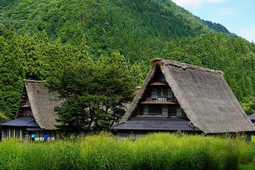 蓋屋頂的合掌祖村