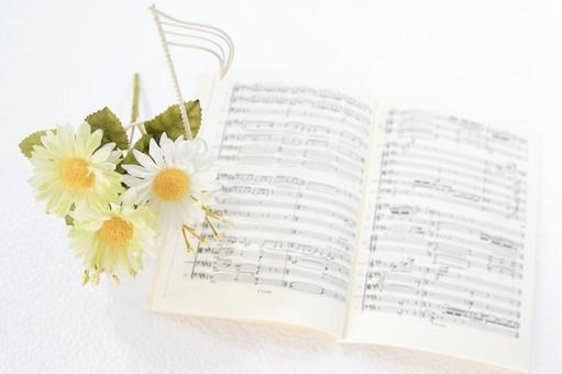 Full score and flowers / notes, total score