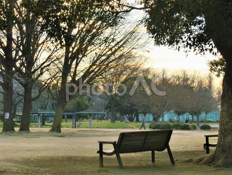 夕暮れ時の公園【川崎】の写真