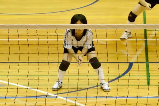 中学排球俱乐部Ⅱ