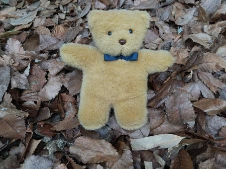 A small stuffed animal with fallen leaves and a bear