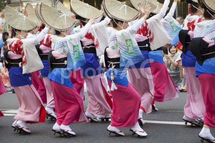 阿波踊り10の写真