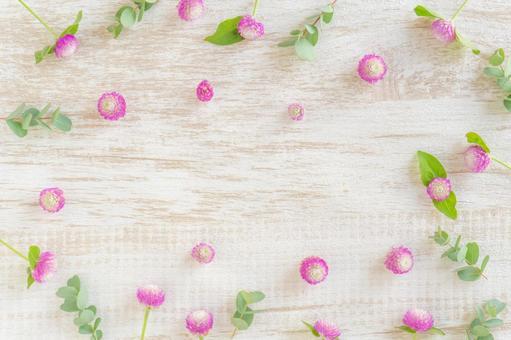 粉色和白色莧菜和桉木木紋框架