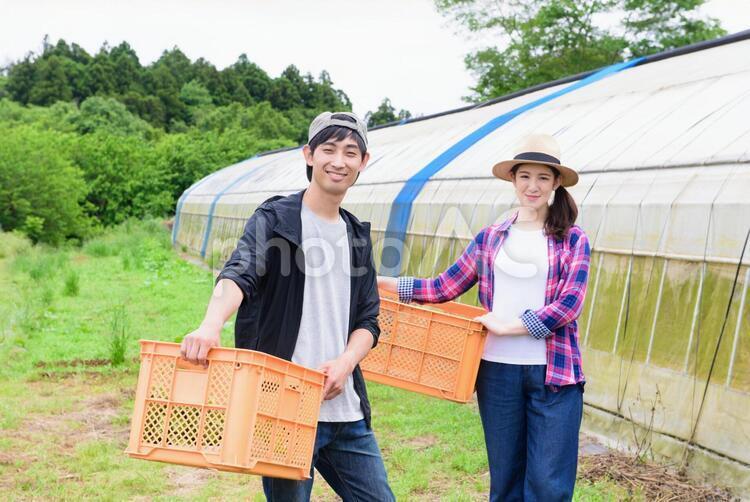 畑にいる農家の夫婦3の写真