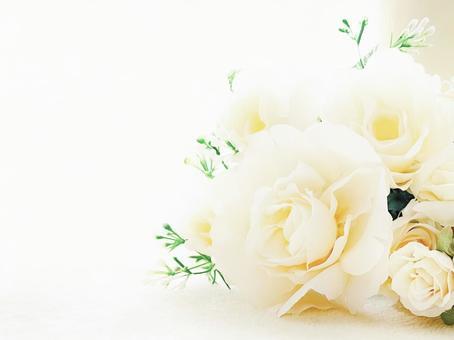 白玫瑰留言卡