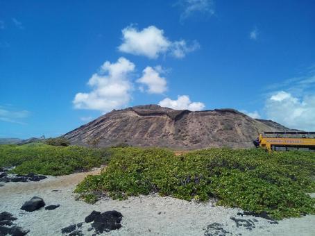 하와이 와이키키 버스 투어