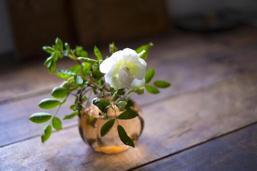 흰 장미 꽃과 꽃병