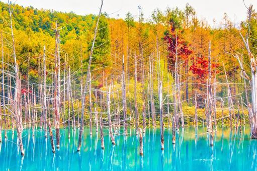 Blue Pond (Shirogane, Biei Town)