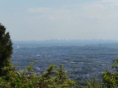 산에서 도쿄를 내려다 _ver1