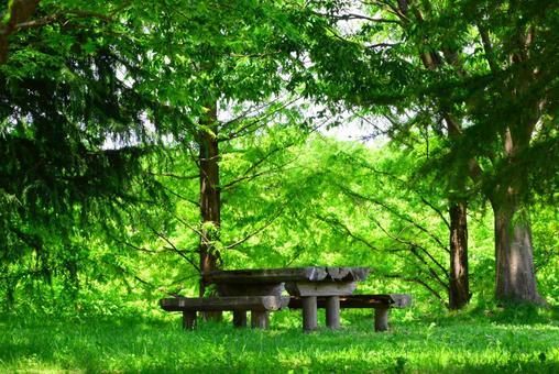 Fresh green eco image