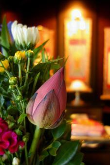 Buddhist flowers