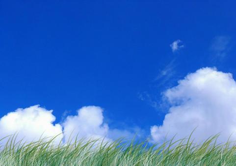 여름의 하늘 01