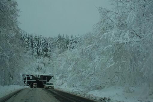 北海道(坏天堂)在冬季