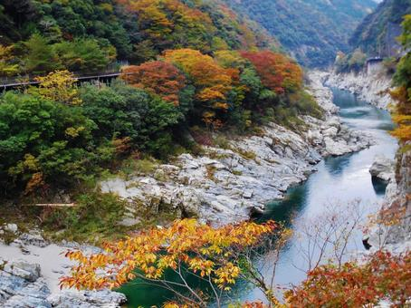 Autumn's Oboke gorge