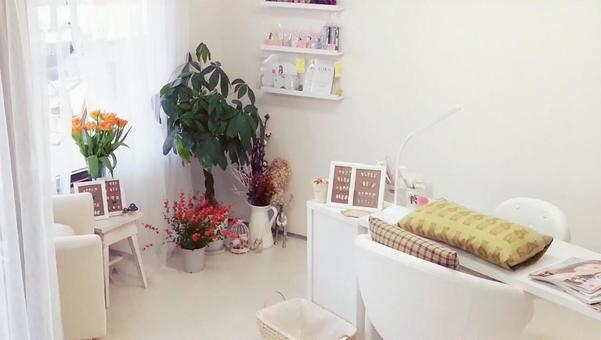 Salon scenery