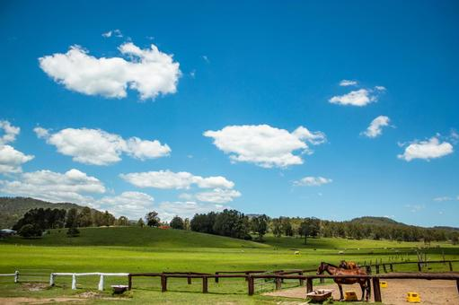 Ranch grazing field large nature horses vast wide wide sky clouds earth nature natural country living 2