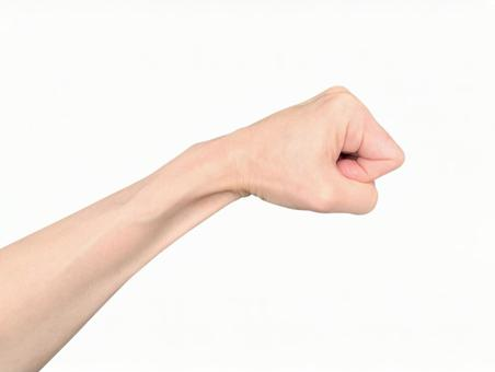 Hand (background white / cutout PSD) _punch