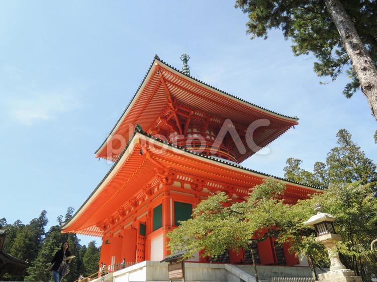 高野山2の写真