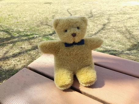Plush bear and park bench