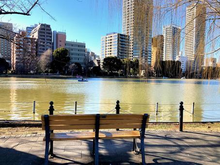 Bench 2 in front of Ueno Shinobazu Pond