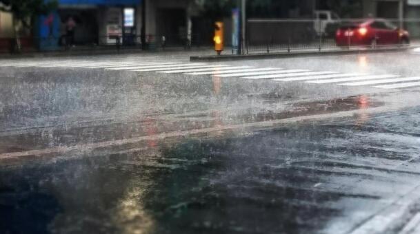 ゲリラ豪雨2021F1