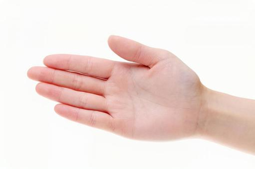 Young lady's hand palm