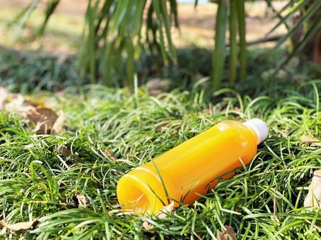 在公園喝橙汁