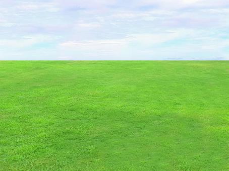 天空和草坪/天空/草地/人造草皮/天然/綠色/綠色/自然/材質紋理/牆紙/圖像