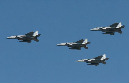 Air Self-Defense Force F-15J