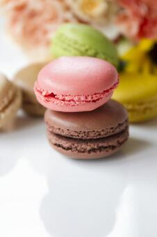 Colorful Macaron _ 11