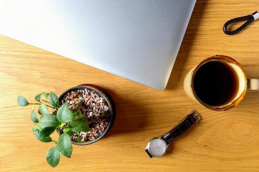 Laptop and banyan tree bonsai