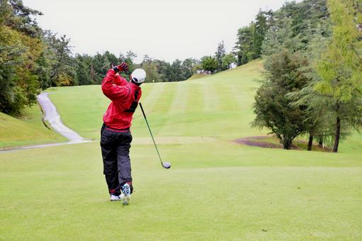 Male golfers who made a missed shot