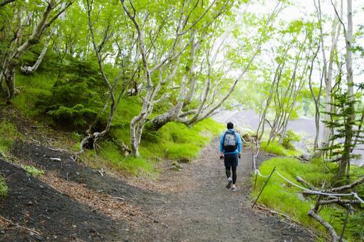 Climbing from Mt. Fuji Subashiri Exit