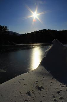 Asahi ascending to the lake surface in winter