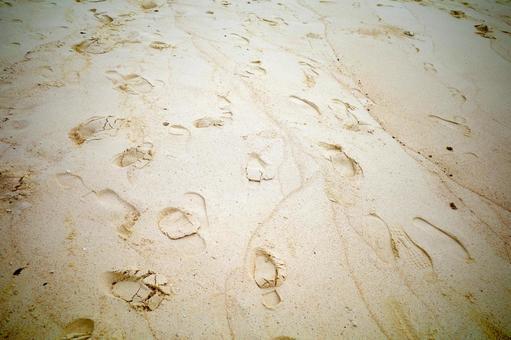 沙灘腳印,沙灘腳印,沙灘腳印
