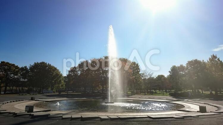 舎人公園の噴水の写真