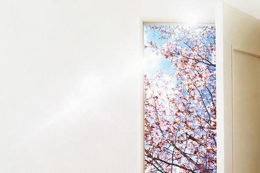 New Life Door 3 New Life Image Door Door Sakura Haru