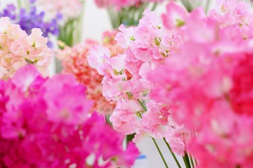 花市场-38