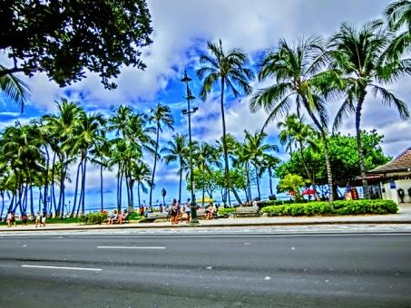 칼라 카 우아 거리 하와이