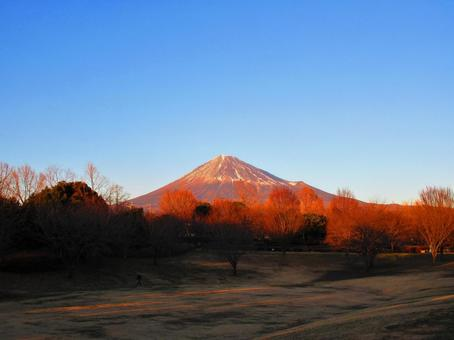 Mt. Fuji in winter in the evening sun 3