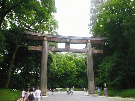 Meiji Shrine Torii-02