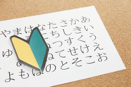 Studying Hiragana