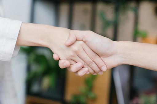 Hands of men and women shaking hands