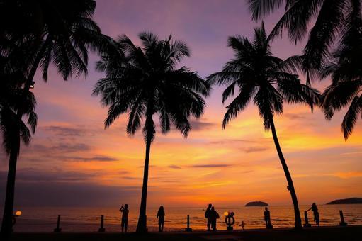 Beach resort 293
