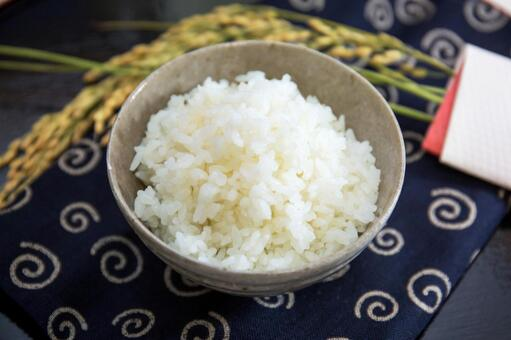 Rice and ear rice