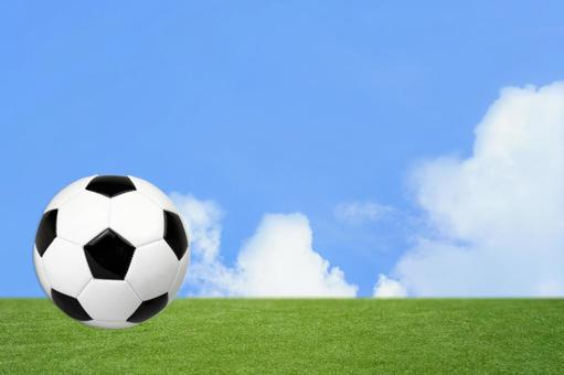 Soccer ball / soccer / soccer / futsal / sports / playground / blue sky and grass background / headline, title back text space